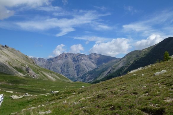 Col de la Cayolle looking North.