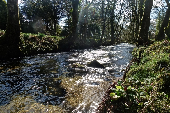 My place of Solitude: River Fowey on Bodmin Moor