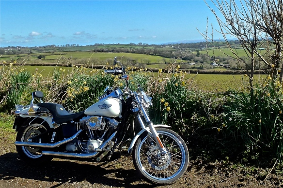A Harley in the spring landscape.