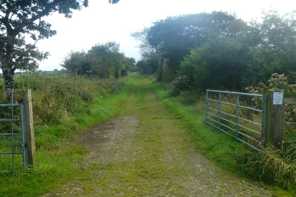 The old railway line, once the Atlantic Coast Express ran along here.