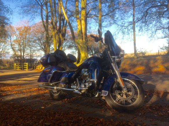 Baby Blue rests in Golden Shadows. Heaven on two wheels!